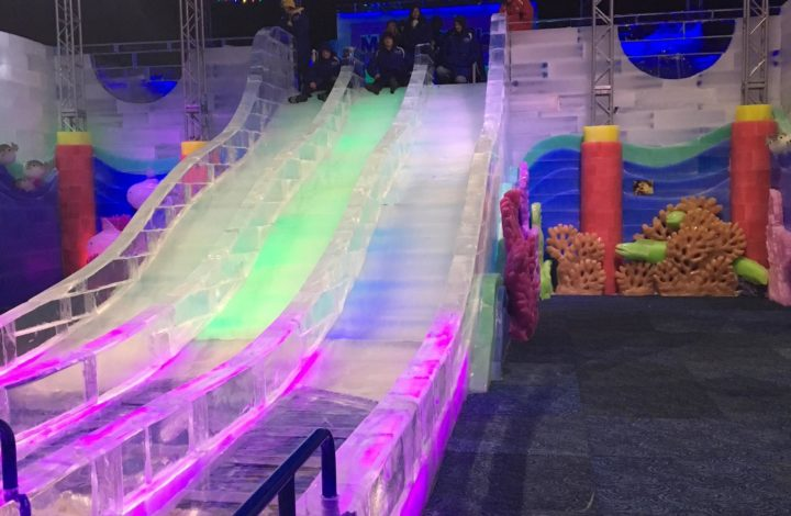 The slide at Ice Land