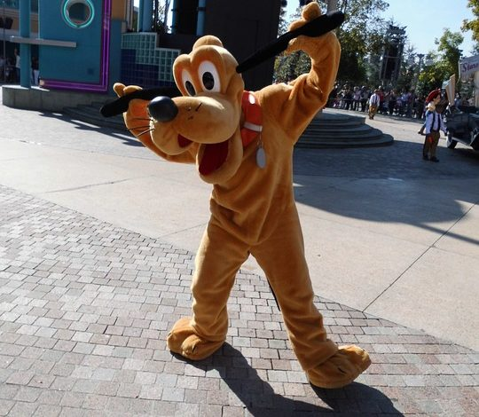 Pluto is seen at Disneyland