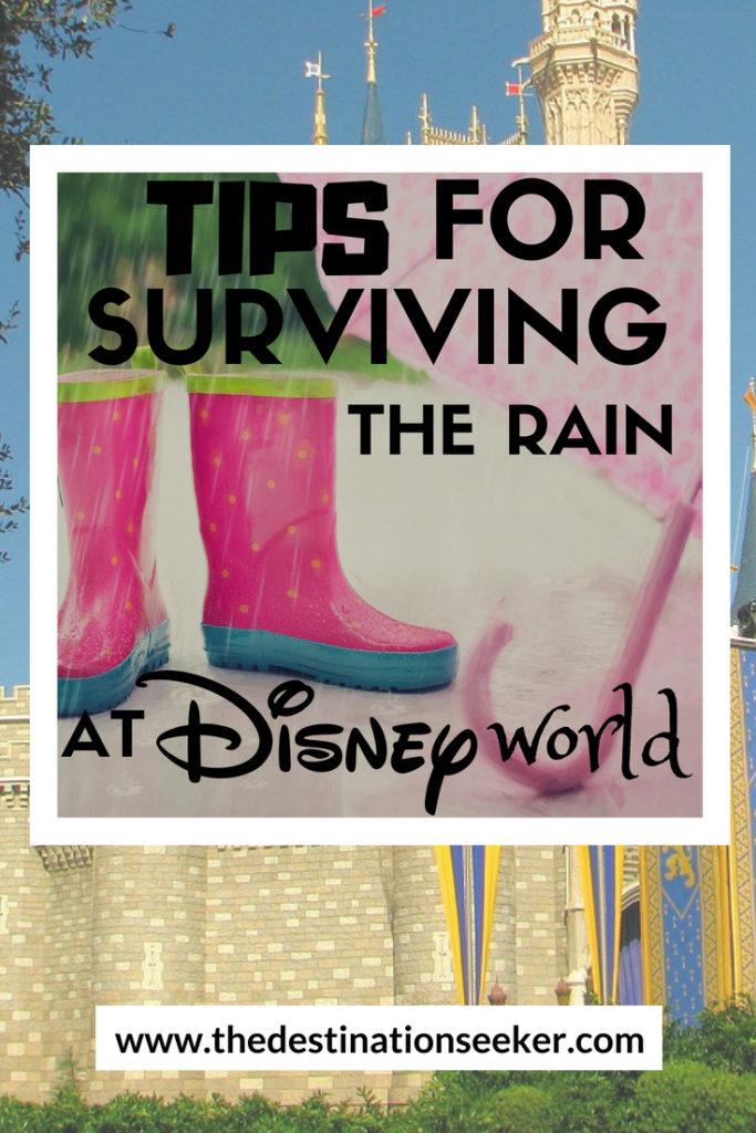 Surviving the Rain at Disney World