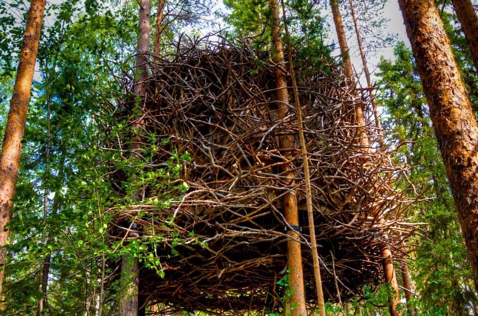 The Bird's Nest, Treehotel Sweden, Photo by Georgia Makitalo