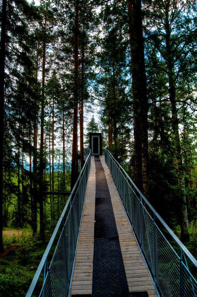Treehotel, Sweden, photo by Georgia Maktialo
